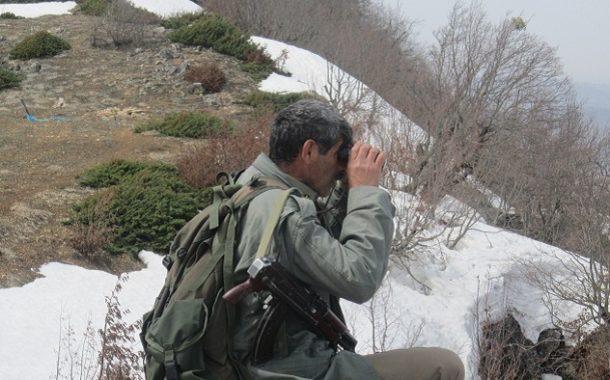 جنگلبان و محیطبان؛ حافظان عرصههای طبیعی و بقای گردشگری